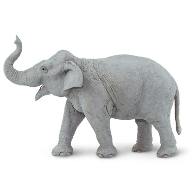 Safari Ltd Saf112389 Asian Elephant, Wildlife Wonders