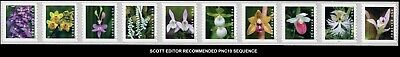 2020 US STAMP - Wild Orchids - PNC 10  - Scott  Sequence - 3K/10K