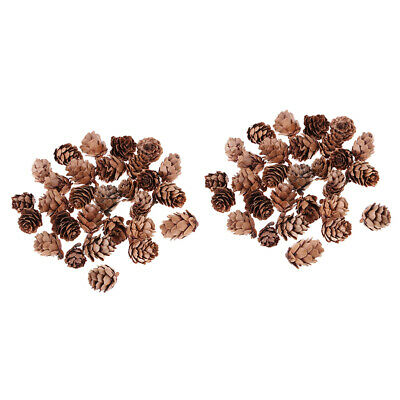 60pcs Real Pine Cones Pinecones Vase Fillers Home Party DIY Embellishments