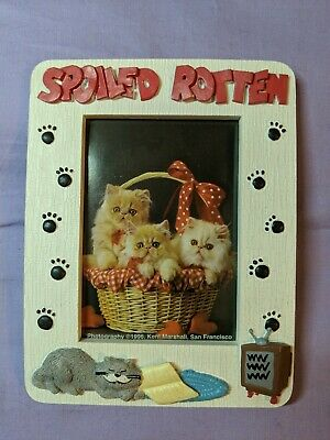 Spoiled Rotten Cats Kittens Paws 5x7 3-D Photo Picture Ceramic Frame 3.25 x 4.5""
