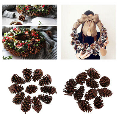 20Pcs Rustic Natural Dried Pine Cones For Wedding Party Home Decorations