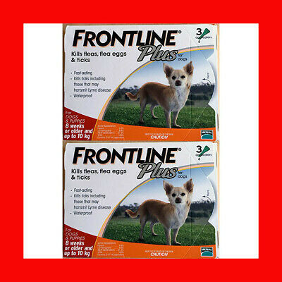 Frontline Plus 6 Month Supply For Dogs 0-22 lbs (0-10KG) Fast Free Shipping