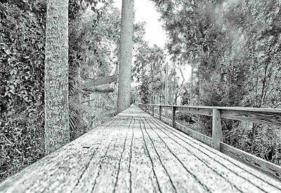 """""""The Secret Walkway"""" Art Print from Artist Original Work Signed LIMITED EDITION"""