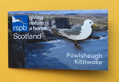 RSPB KITTIWAKE Enamel Pin Badge on Scotland Fowlsheugh Special Picture Card