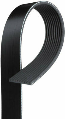 Serpentine Belt-Century Series Premium OE Micro-V Belt GATES K100607