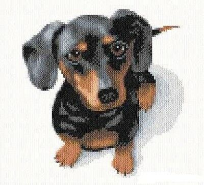 Dachshund Dog Cross Stitch Chart