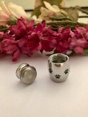 Pet Ashes Cremation Funeral Memorial Urn Small keepsake Urn for Pets