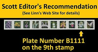US Wild Orchids forever PNC10 B1111 MNH 2020
