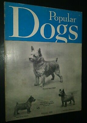 Popular Dogs Illustrated Magazine Champion Norwich Terrier on Cover Feb 1954