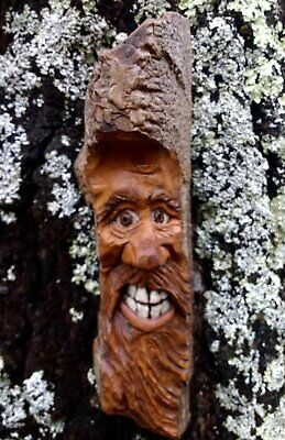 Tree Spirit Old Man Wizard Hobbitt wall art sculpture hand carved Wood