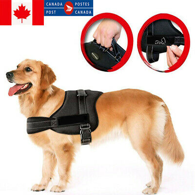 Dog Harness Outdoor Adventure Pet Vest Padded Handle Small Medium Large Big Size
