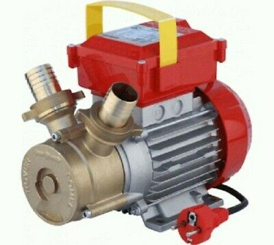Rover 30 Ce Ettropompa Selfpriming Pump hp 1 for Racking Liquids Grocery Wine AC