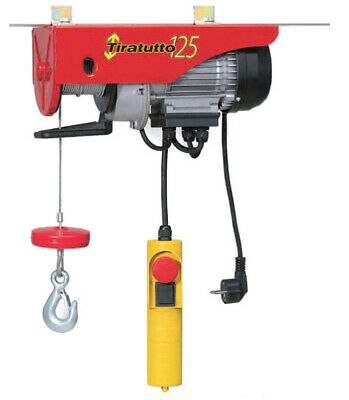 Hoist Electric 125/200 kg Winch Tiratutto Elevator Lifter 450W
