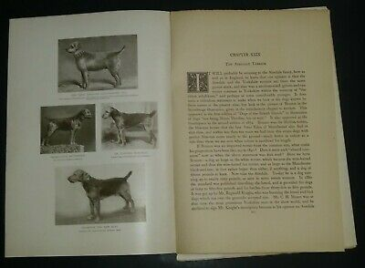 Airedale Terrier Breed History & Photos from the 1906 Dog Book by James Watson