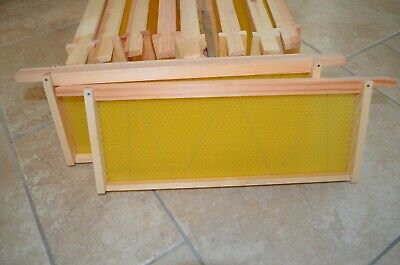 National bee hive super Manley frames and wax foundation fully assembled set