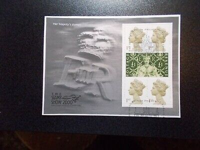 GB 2000 Commemorative Stamps~Stamp Show~M/S~Fine Used~on piece~ex fdc~UK Seller