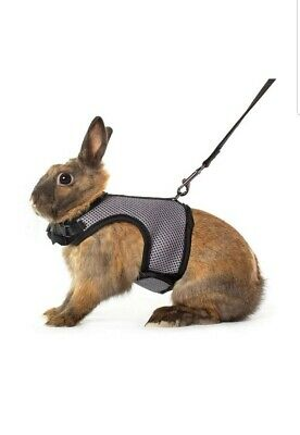 """Niteangel Soft Harness with Elastic Leash for Rabbits Bunny Pet Supply Grey 47"""""""