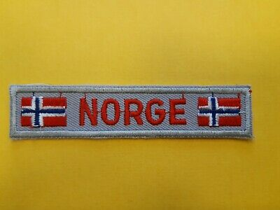 in462 INSIGNE SCOUTS NORVEGE NORWAY NORGE  SCOUTING BADGE  SCOUT