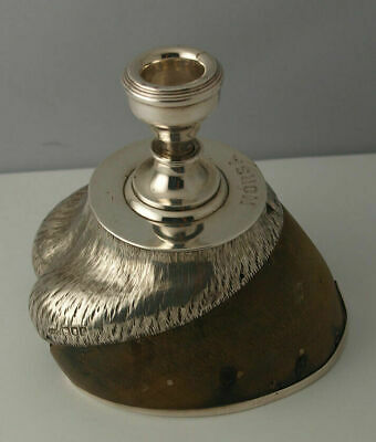 Fine Victorian Solid Silver Mounted Horse Hoof Candlestick - London 1901.