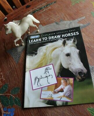 Breyer Learn to Draw Horses Set Little Bits Paddock Pals Morgan and Book