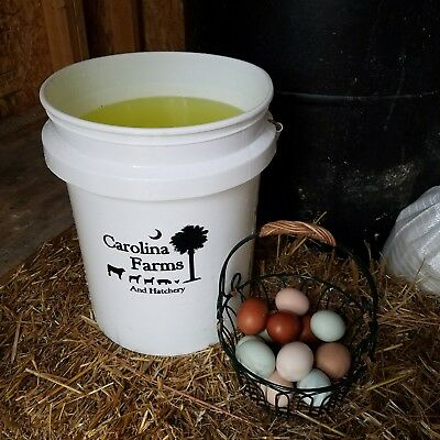 Poultry / Livestock - Vitamins and Electrolytes, chicken, chicks, waterfowl