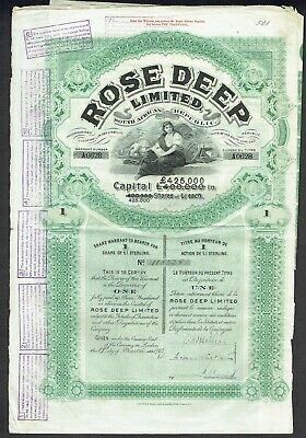 Share certificate (South Africa) Rose Deep Ltd. (1902)