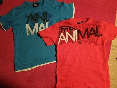 Boys Animal T Shirt 7/8