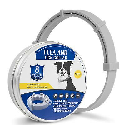 Flea and Tick Collar for Dogs With Adjustable Waterproof 8 Month Protection