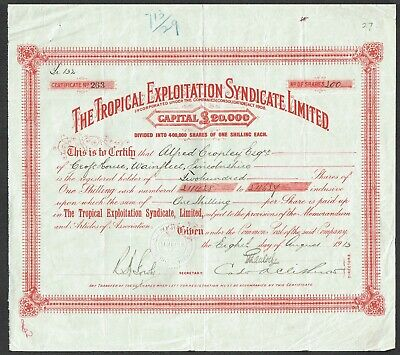 Share certificate, Tropical Exploitation Syndicate Ltd. (1913)