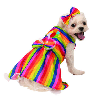 Arcobaleno Femmina Animale Domestico Luminoso Festa Abito Halloween Costume