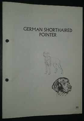 German Shorthaired Pointer RAS Kennel Control Breed Standards M Davidson Ill