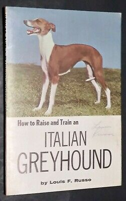 Vintage How to Raise and Train an Italian Greyhound Louis Russo Champion Photos