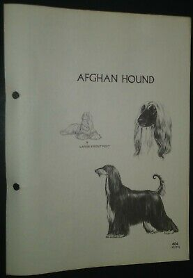 Afghan Hound RAS Kennel Control Breed Standards M Davidson Ill