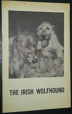 Vintage Irish Wolfhound Pamphlet from the IWCA Club of America Illustrated