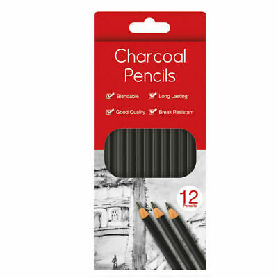 12 x Charcoal Pencils Drawing Sketching Tones Shades Art Artist Picture Pencil