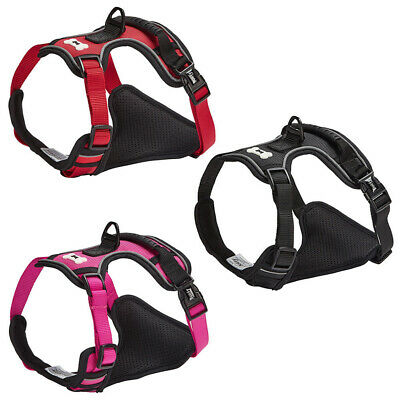 "*New* Bunty ""Adventure Harness"" Dog/Puppy/Pet Soft Adjustable Outdoor Harness"