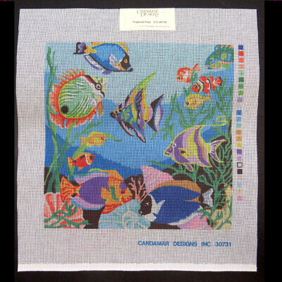 14 by 14-Inch Candamar Designs 30795 Daisies and Poppies Needle Point Kit