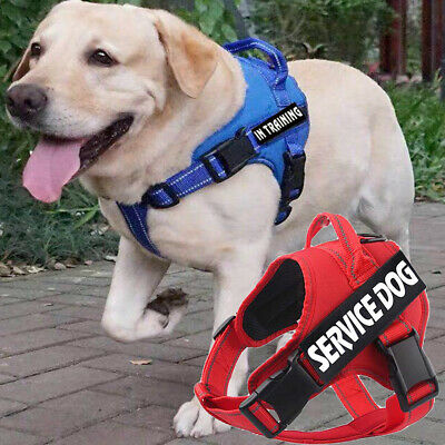 No Pull Service Dog Harness Walk Adjustable Pet Training Vest & 2 Free Patches