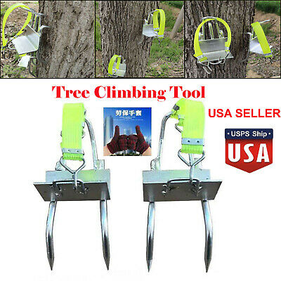 Climbing Tool Pole Spikes Hunting Observation Picking Fruit Nuts Five-claw Tree