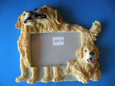 GOLDEN RETRIEVER Lab 3 DOGS PHOTO PICTURE FRAME 4 x 6  H2