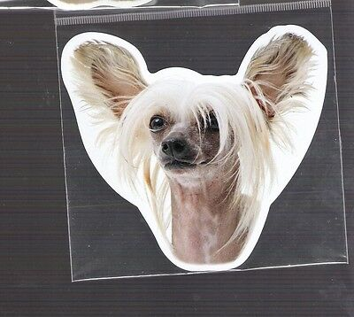 Chinese Crested  4 inch face magnet for car or anything metal