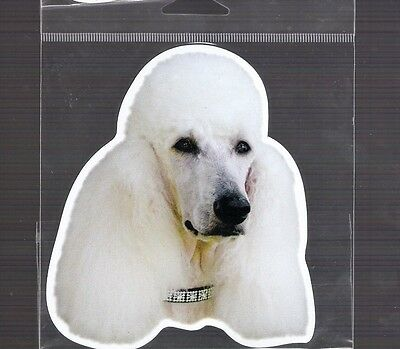 Poodle White  4 inch face magnet for car or anything metal     New