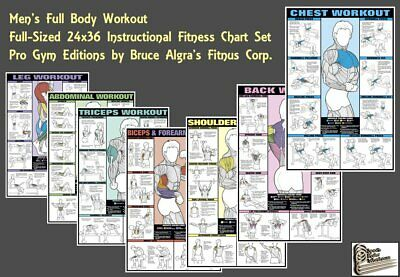 BICEPS FOREARM WALL CHART Professional Weight Training Fitness Gym POSTER Chart