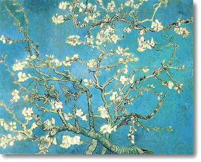 Van Gogh Almond Blossoms Stretched Canvas Art Repro