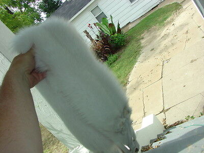 Huge White Shadow fox Ranch fur pelt skin hide beautifully tanned white leather