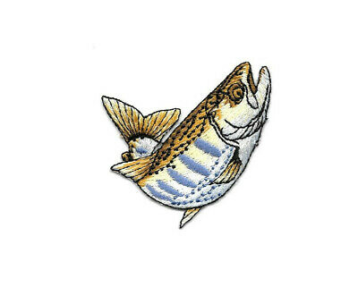 Fish - Fishing - Trout - Brook Trout - Lake Trout - Embroidered Iron On Patch