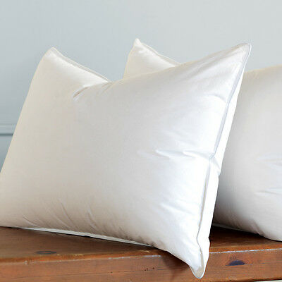 New Pair Of Feather Pillows, 20% Goose Down Filling , New Lower Price