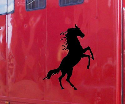 Sca Art - Horse Vinyl Sticker Decal Horsebox Trailer