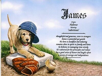 """Baseball Puppy"" Name Meaning Print Personalized (Sports, Dogs, Animals)"