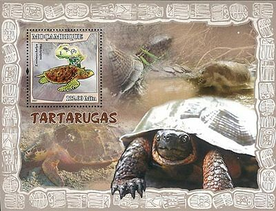 Mozambique 2007 Stamp, MOZ7115B Turtle, Marine Life, Animal, Africa, Place S/S